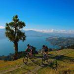 Dlaczego rowery górskie są tak popularne ?
